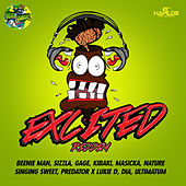 Xcited Riddim by Various Artists
