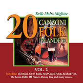 20 delle Molto Migliore Canzoni Folk Irlandese, Vol. 2 by Various Artists