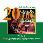 20 delle Molto Migliore Canzoni Folk Irlandese, Vol. 1 by Various Artists