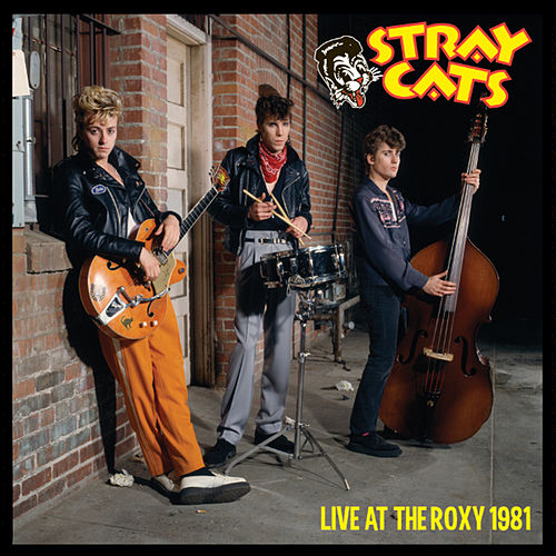 Play & Download Live at the Roxy 1981 by Stray Cats | Napster