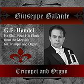 G. F. Handel: Messiah in G Major for Trumpet and Organ, HWV 56: He Shall Feed His Flock by Giuseppe Galante