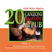 Play & Download 20 delle Molto Migliore Canzoni Irlandese da Pub, Vol. 3 by Various Artists | Napster