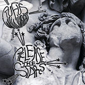 Release The Stars by Rufus Wainwright
