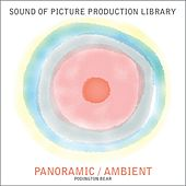 Play & Download Panoramic / Ambient by Podington Bear | Napster