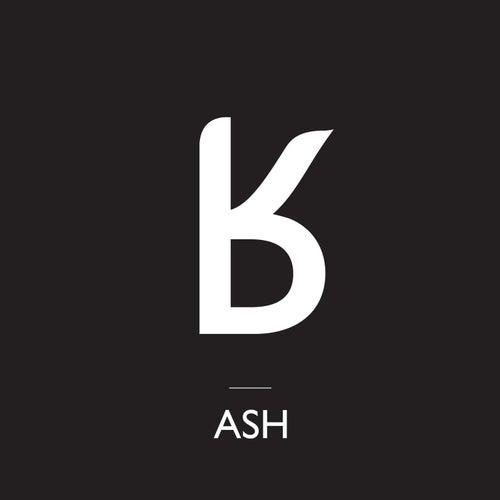 Return of White Rabbit (Atomic Heart Remix) by Ash