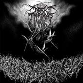 Play & Download Sardonic Wrath by Darkthrone | Napster