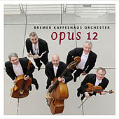 Play & Download Opus 12 by Bremer Kaffeehaus-Orchester | Napster