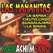 Play & Download Las Mananitas (Instrumental) by Mariachi Mexico | Napster