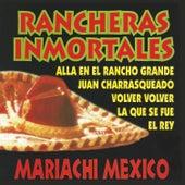 Rancheras Inmortales (Instrumental) by Mariachi Mexico