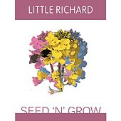 Seed 'N' Grow by Little Richard