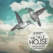 Play & Download We Call It House, Vol. 14 by Various Artists | Napster