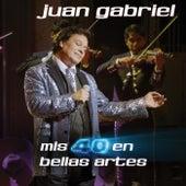 Play & Download Mis 40 En Bellas Artes by Juan Gabriel | Napster