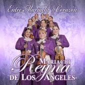 Play & Download Entre Mariachi Y Corazon by Mariachi Reyna De Los Angeles | Napster