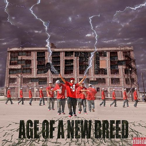 Play & Download Age of a New Breed by Switch | Napster