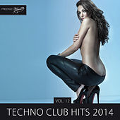 Techno Club Hits 2014, Vol. 12 by Various Artists