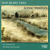 Play & Download Sonic Temples by Ran Blake | Napster