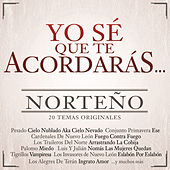 Play & Download Yo Sé Que Te Acordarás Norteño by Various Artists | Napster