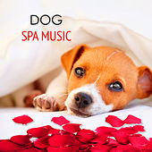 Play & Download Dog Spa Music - Calming Relaxing Healing Music 4 your Dog Day Spa In Pet Salon by Pet Care Music Therapy | Napster