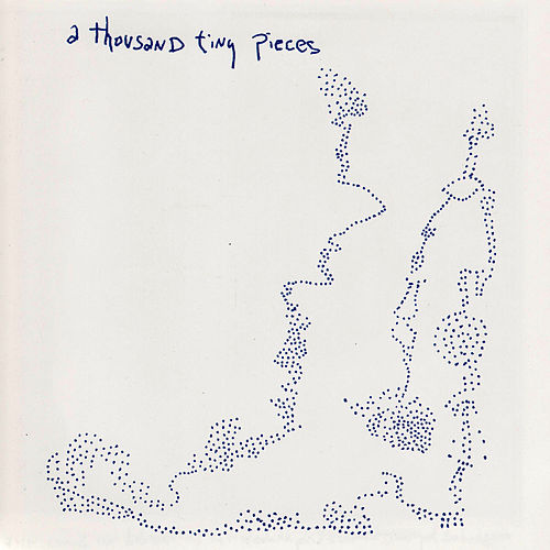 A Thousand Tiny Pieces by Sean Hayes