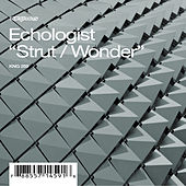 Play & Download Strut / Wonder by Echologist | Napster