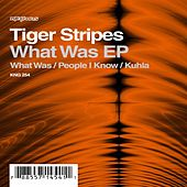 Play & Download What Was EP by Tiger Stripes | Napster