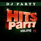 Hits Party Vol. 14 by DJ Party