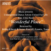 Play & Download Wonderful Place by Blaze | Napster