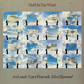 Shift in the Wind by Gary Peacock