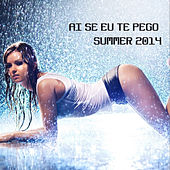 Ai Se Eu Te Pego Summer 2014 by Various Artists