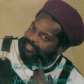 The 20 Classic Hits Of Junior Delgado by Junior Delgado