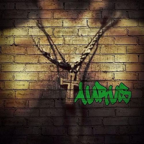 Taurus by Trinity