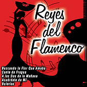 Play & Download Reyes del Flamenco by Various Artists | Napster