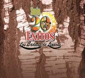 Serie 20 Exitos by Los Cadetes De Linares