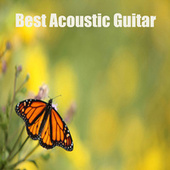 Best Acoustic Guitar by The O'Neill Brothers Group