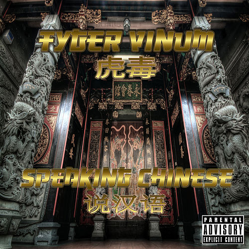 Speaking Chinese by Tyger Vinum