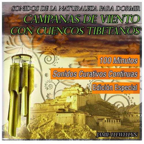 Campanas de Viento Con Cuencos Tibetanos by Jamie Llewellyn