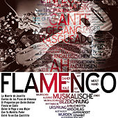 Play & Download Flamenco by Various Artists | Napster