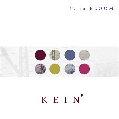 In Bloom by Kein