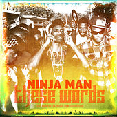 Play & Download These Words by Ninjaman | Napster