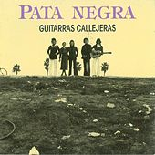 Play & Download Guitarras Callejeras by Pata Negra | Napster