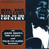 Play & Download Back To The Country by Big Joe Williams | Napster