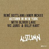 Autumn in New York by Andy McKee René Bottlang
