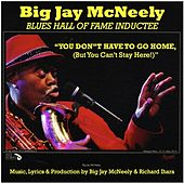 Play & Download You Don't Have to Go Home, (But You Can't Stay Here) by Big Jay McNeely | Napster