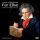 Play & Download Für Elise by Anastasi | Napster