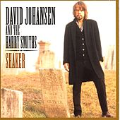 Shaker by David Johansen