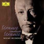 Play & Download Strauss Conducts Strauss by Various Artists | Napster
