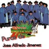 Play & Download Puras de Jose Alfredo Jimenez by Banda Zorro | Napster