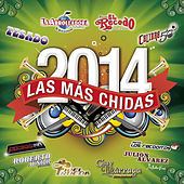 Las Más Chidas 2014 by Various Artists
