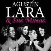 Agustín Lara & Sus Musas by Various Artists