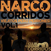 Play & Download Narco Corridos: Viejitos Pero Perrones! Vol. 1 - Presentado por Club Corridos by Various Artists | Napster